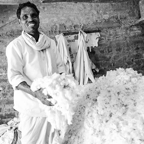 fairtrade cotton organic cotton ginning