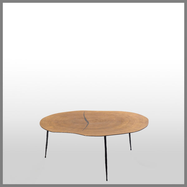 Belgium Veneer Coffee Table