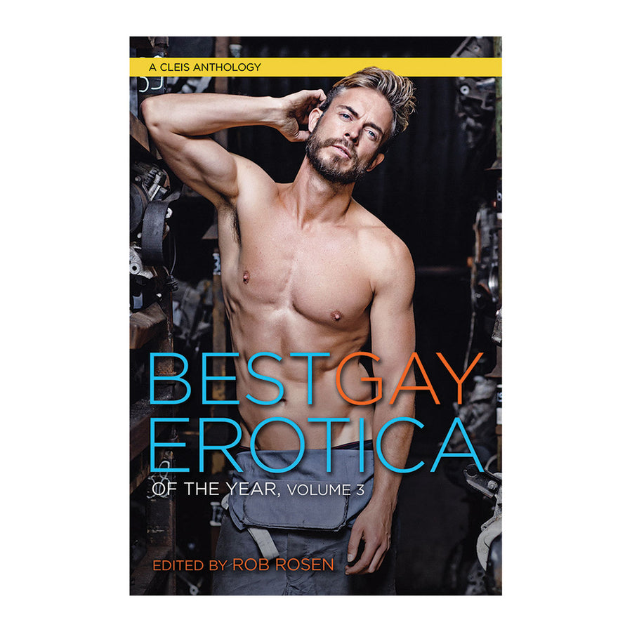 Best Gay Erotica of the Year - Volume 3 - Cleis Press