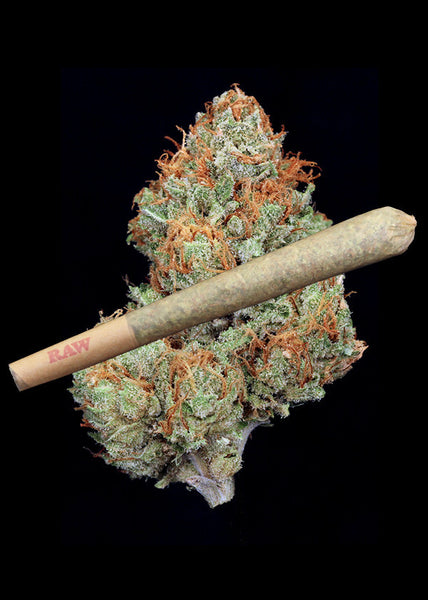 Candyland Joint