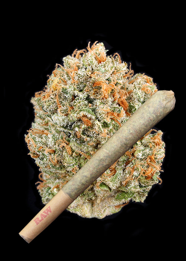 Lemon Poison Joint