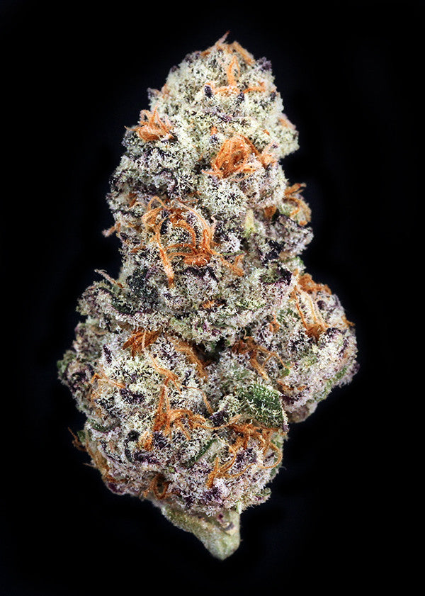 Peanut Butter Breath