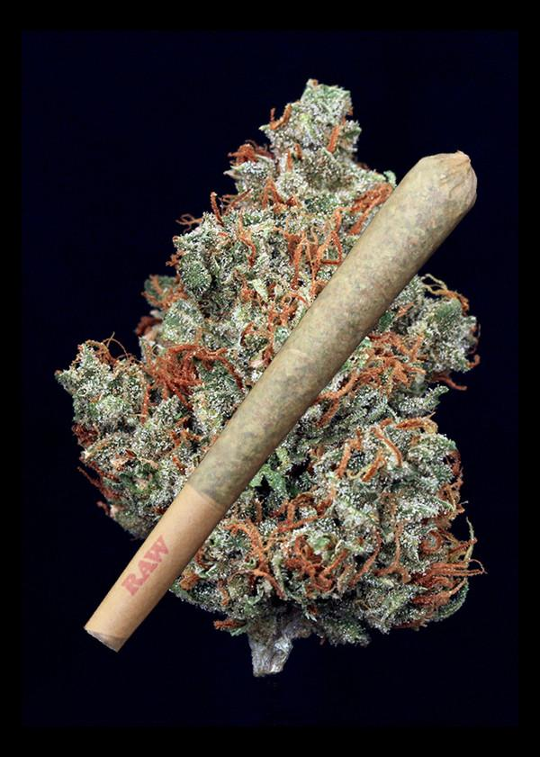 White Urkle Joint