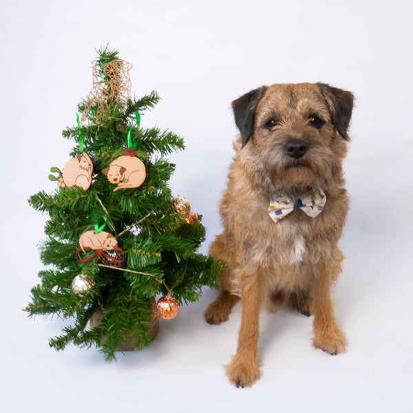 Christmas Croissant - Border Terrier Christmas decoration