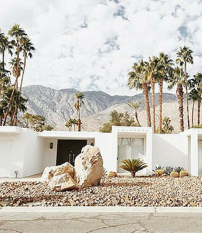 Lazy Sundays With Harpers | Desert Styling, Palm Springs