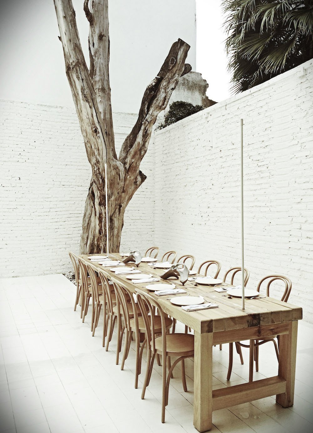 Natural Bentwood Dining Chair