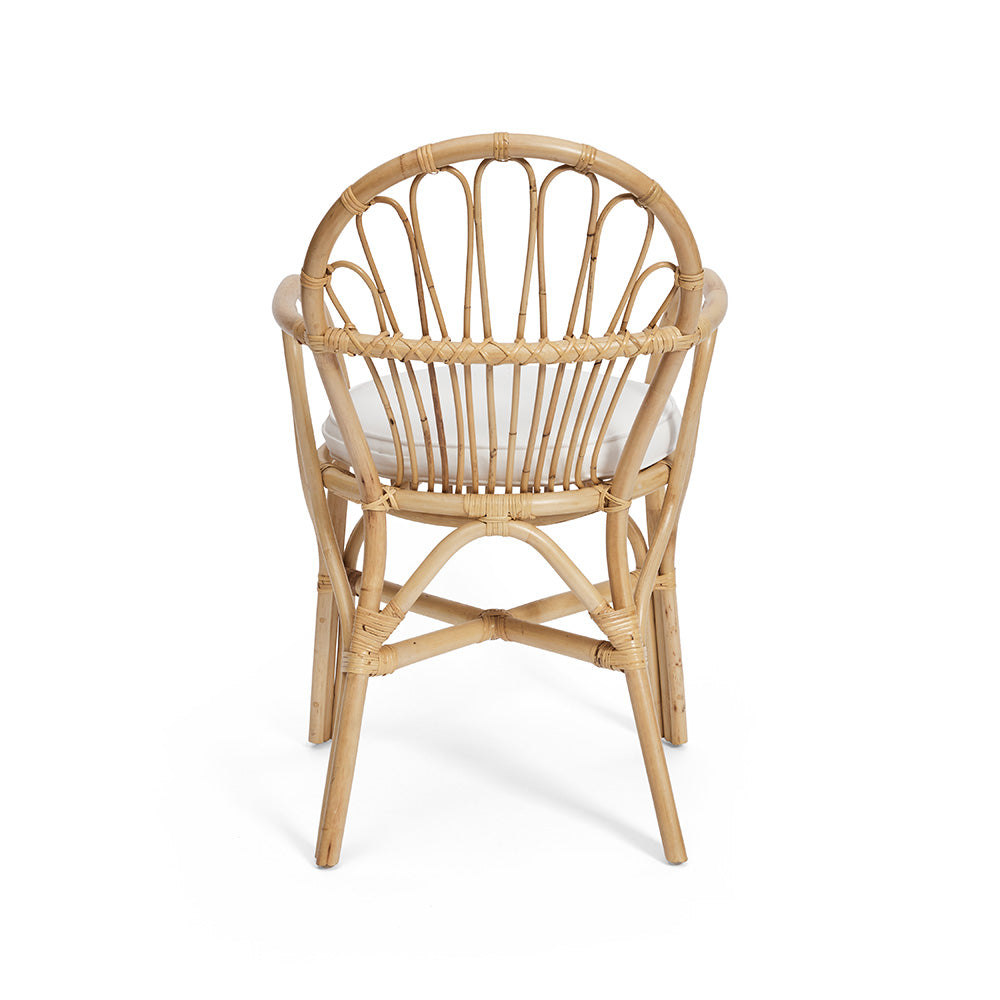 Outdoor & Indoor Cane Dining Chair
