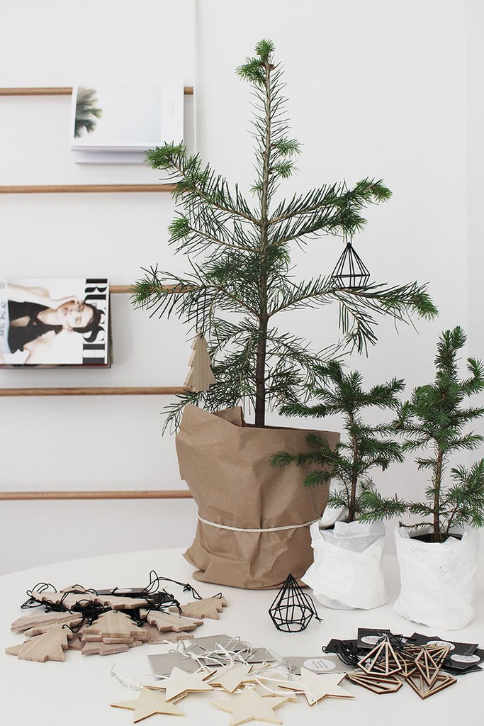 Small Christmas Tree in a Paper Bag Tied with String