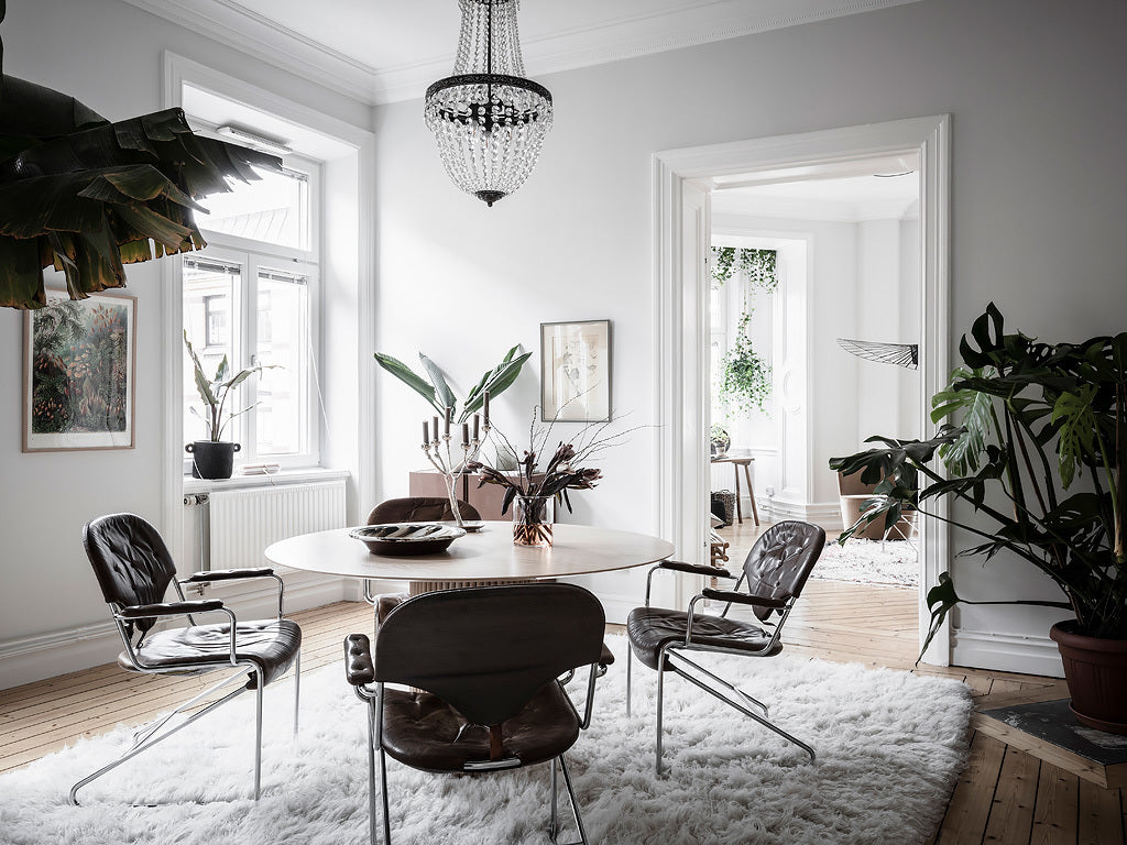 Scandinavian style with natural plants in dining room
