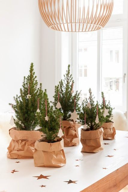 A Few Small Christmas Trees in Paper Bags