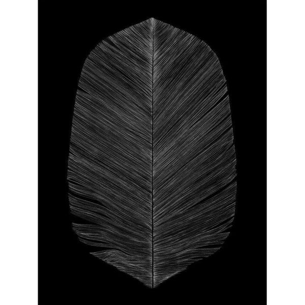 Black Feather Print (2 sizes) - Grøn + White   - 1