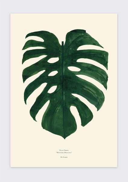 Monstera Delicioso - Print - Grøn + White