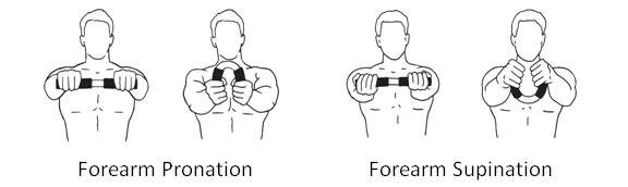 Training_Forearm_Pronation_Supination