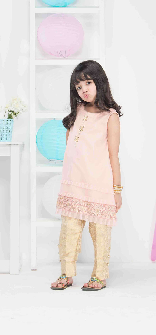 Luxury Pret, Pakistani Fashion Designer PINK ELEGANCE - Phatyma Khan