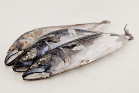 Mackerel - Whole -Bulk