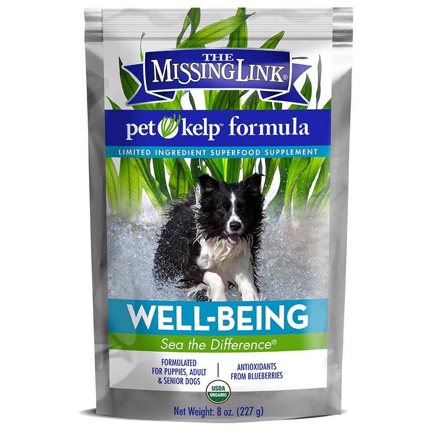 The Missing Link® Pet Kelp® Formula – Well-Being – Limited Ingredient Superfood Supplement For Dogs 8 oz