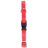 "ADJUSTABLE  NYLON DOG COLLAR - 3/4""x14-20"""
