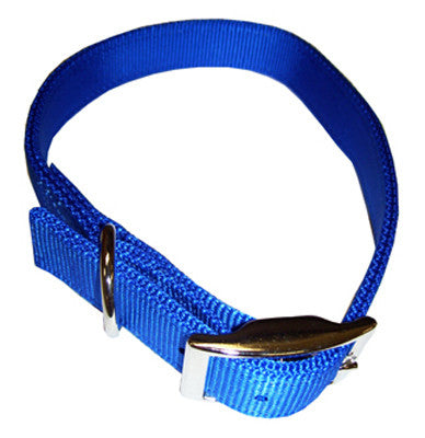Nylon Double Ply Dog Collar - Blue