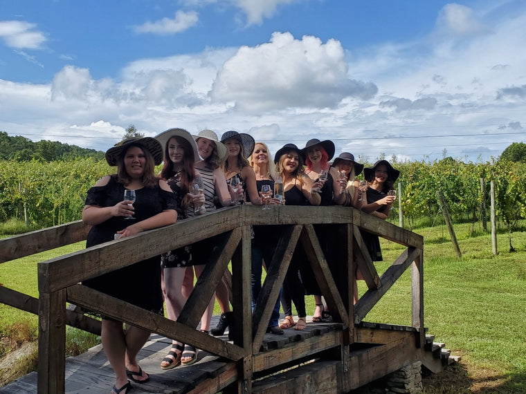 Wine Tour at Bear Claw Vineyards and Winery in Blue Ridge, Georgia.  Girls just want to have fun and learn trip!