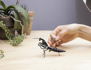 black 3d mantis puzzle
