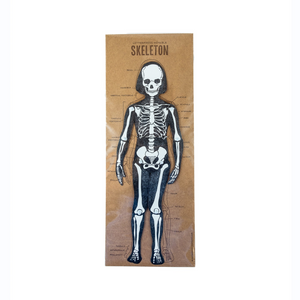 Skeleton System cut-out