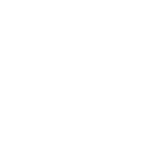 easy to carry icon