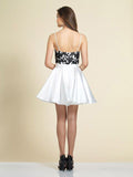 Homecoming Dress Dave & Johnny 2902 Black/Ivory Back