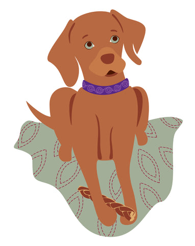 Custom Pet Portrait of Izzy the Vizsla by Oxford Dogma