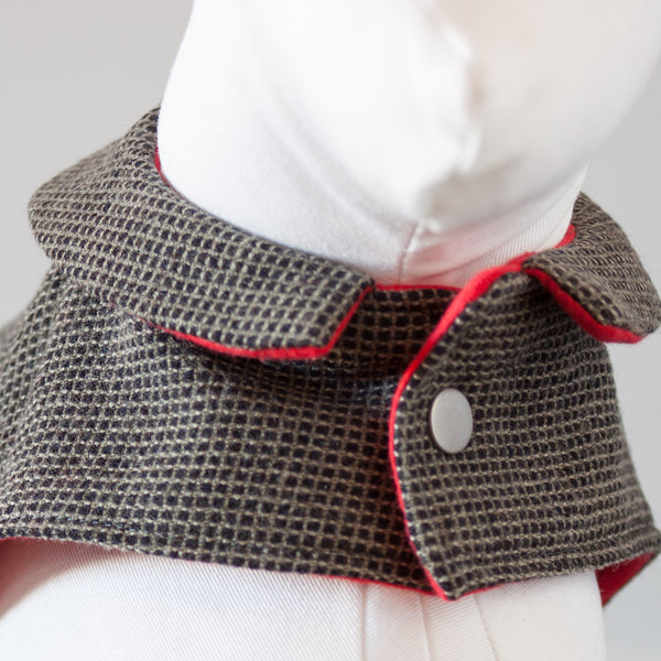 collared dog jacket with snaps