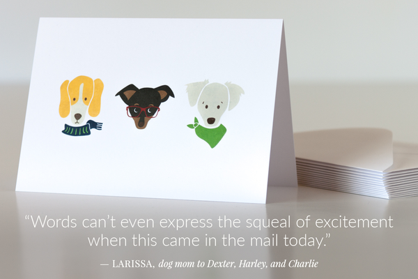 Custom portraits of the Solomon pups Dexter, Harley, and Charlie