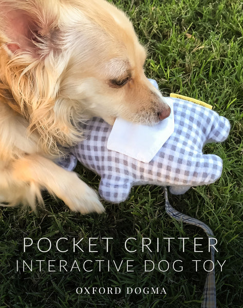 Field testing the Pocket Critter interactive dog toy | oxforddogma.com