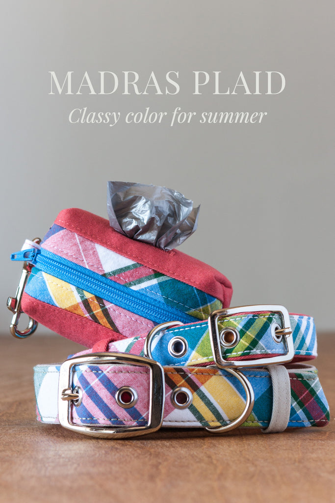 Polished yet casual madras plaid dog accessories handmade by Oxford Dogma