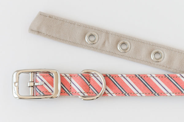 Outside and inside of fabric dog collar with metal buckle | oxforddogma.com