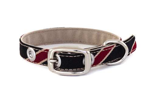 An extra small classic dog collar handcrafted from reclaimed materials with a nickel finish metal buckle | oxforddogma.com