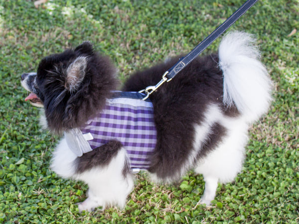 The Comfort Vest Harness is custom sized to fit your dog's proportions  | oxforddogma.com