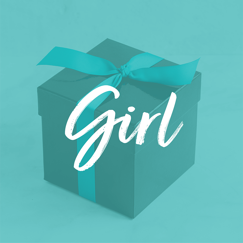 Load image into Gallery viewer, Baby Girl Gift Bundle