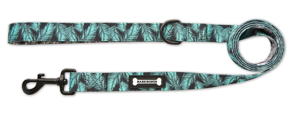 The Tropics Leash