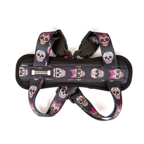 Little Chica Chest Plate Harness