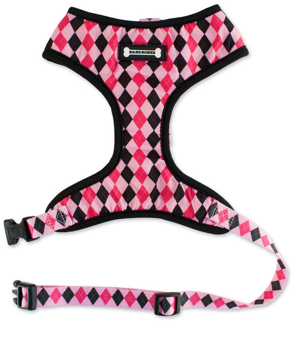 SALE - Miss Waldorf Harness