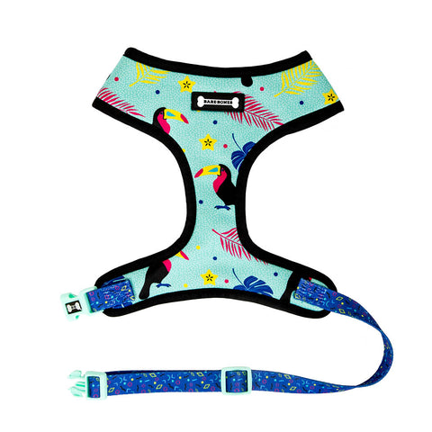 Utopia Harness
