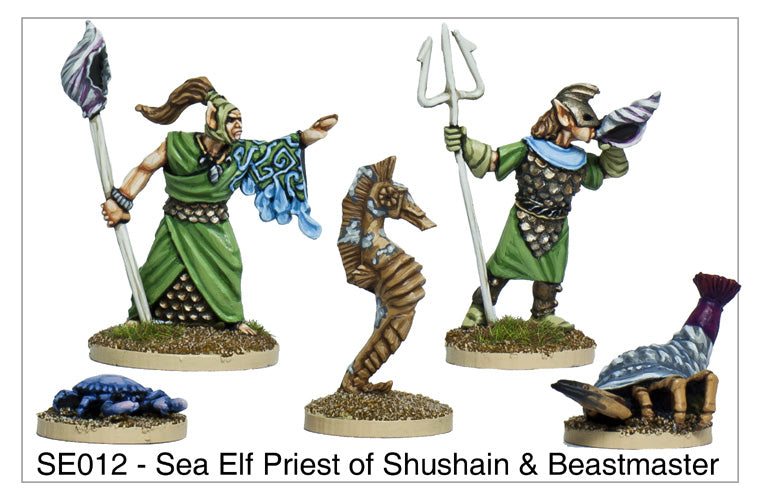 SE012 - Sea Elf Priest of Shushain & Beastmaster