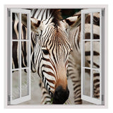 Fake 3D Window African Zebra | Canvas, Posters, Prints & Stickers - StyleIsUS.com
