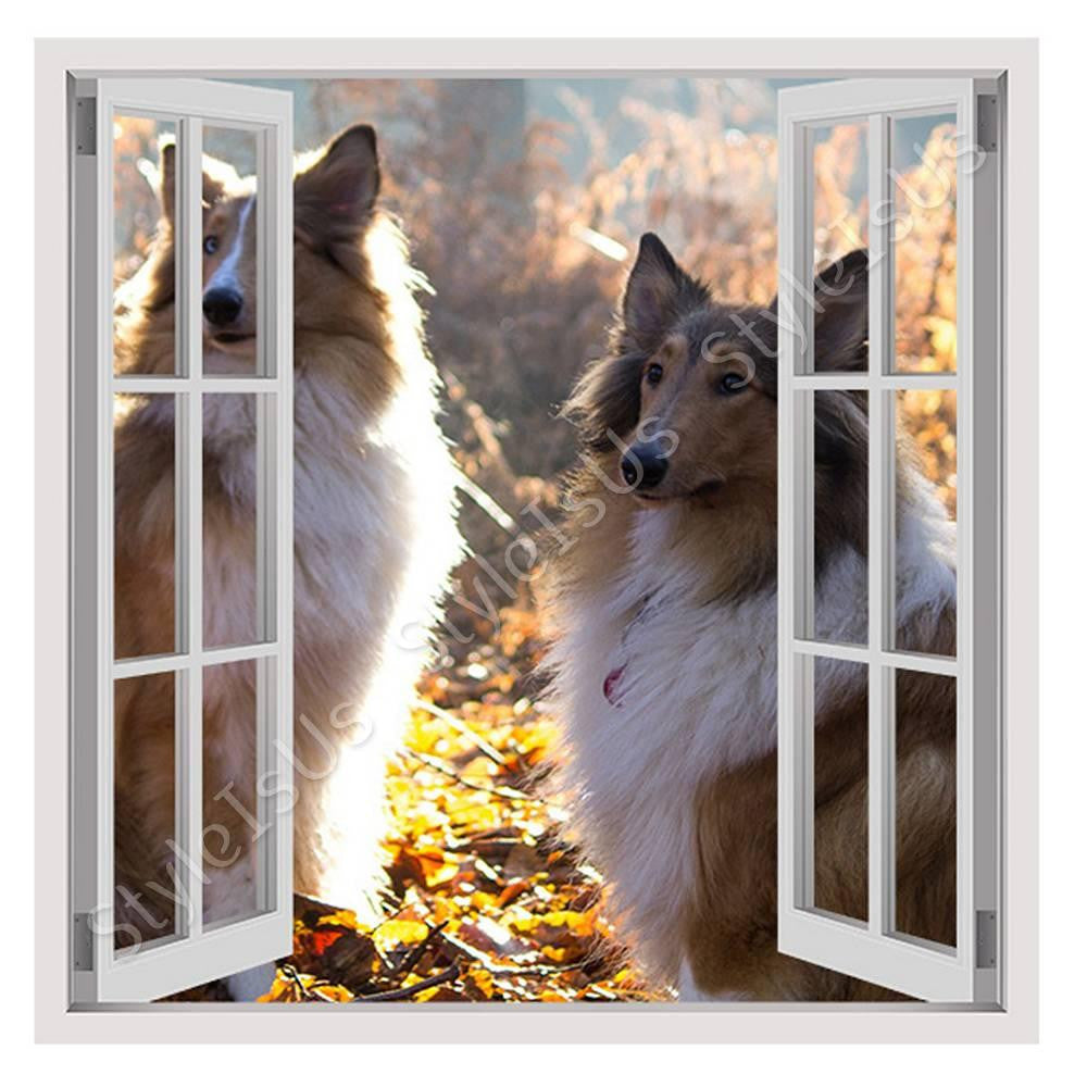 Fake 3D Window Collies Portrait | Canvas, Posters, Prints & Stickers - StyleIsUS.com