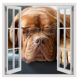 Fake 3D Window Dog with glasses | Canvas, Posters, Prints & Stickers - StyleIsUS.com