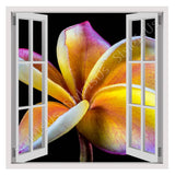 Fake 3D Window Frangipani Flower | Canvas, Posters, Prints & Stickers - StyleIsUS.com