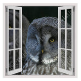 Fake 3D Window Nature Feather Bird | Canvas, Posters, Prints & Stickers - StyleIsUS.com