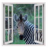 Fake 3D Window Zebra In Wildlife | Canvas, Posters, Prints & Stickers - StyleIsUS.com