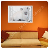 Fake 3D Window Kitten | Canvas, Posters, Prints & Stickers - StyleIsUS.com