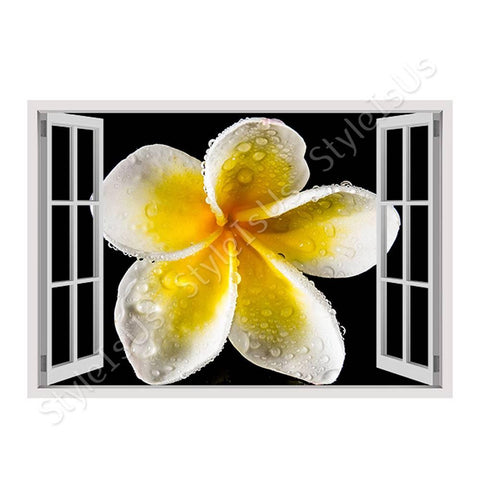 Fake 3D Window White Frangipani Flower | Canvas, Posters, Prints & Stickers - StyleIsUS.com