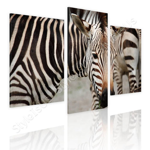 Split 3 panels African Zebra 3 Panels | Canvas, Posters, Prints & Stickers - StyleIsUS.com